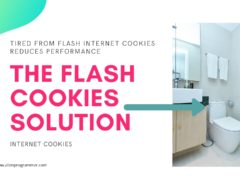 flush internet cookies